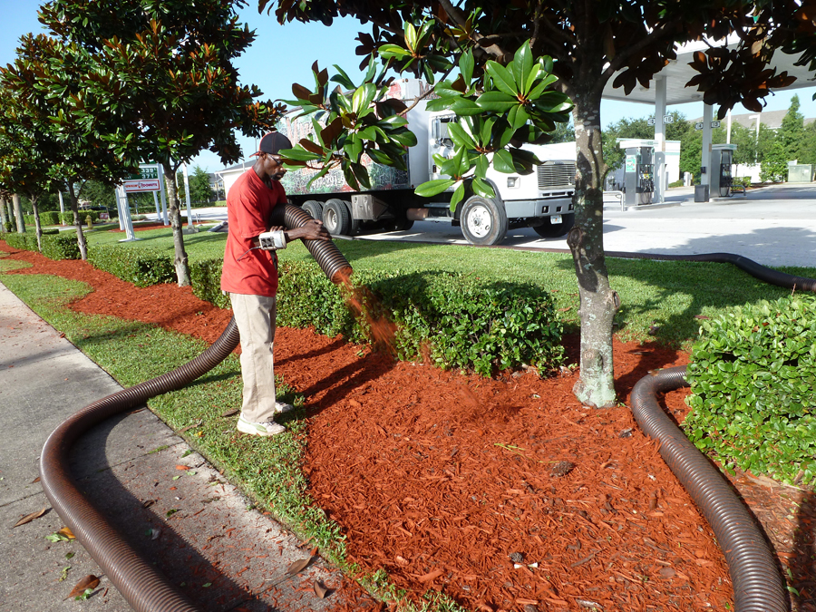 Orlando Commercial Mulch Installation