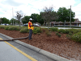 Central Florida Mulch - Seminole County Mulch
